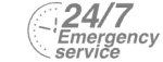 24/7 Emergency Service Pest Control in Norbury, SW16. Call Now! 020 8166 9746
